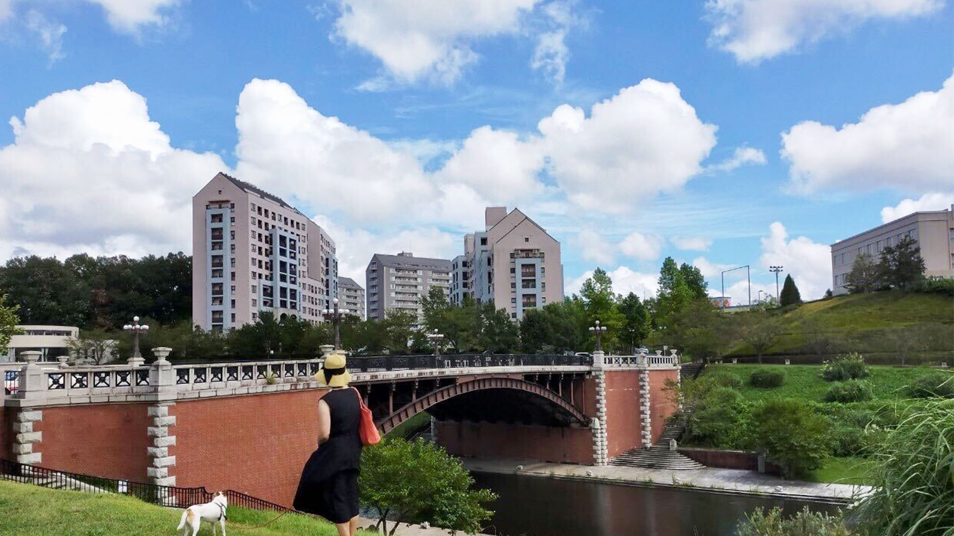多摩ニュータウン 都内最古の陸橋 長池見附橋がある理由