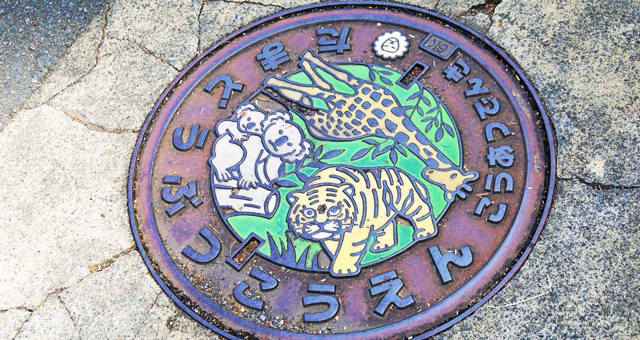 多摩動物公園 オラウータン「ひな」受け入れ 多摩市