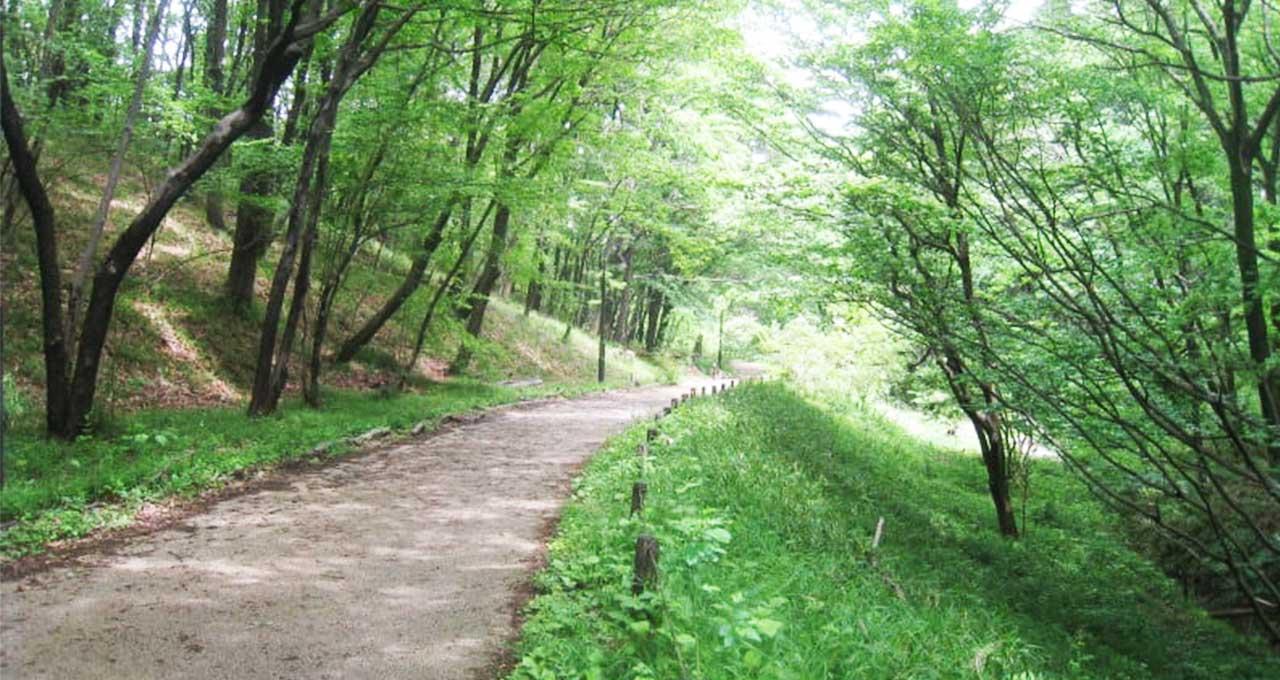 小山内裏公園 普段入れない保護区探検!サンクチュアリ・ツアー開催【八王子】